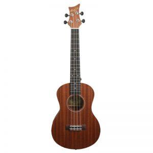 IVANS UT10 – Tenor ukulele