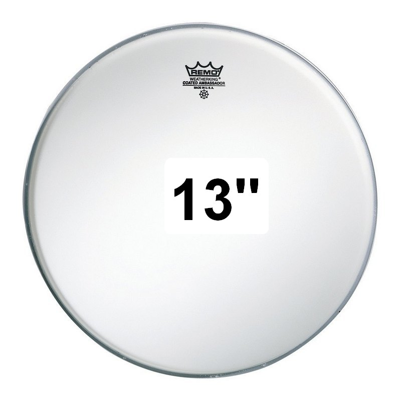 13'' (33.02cm)