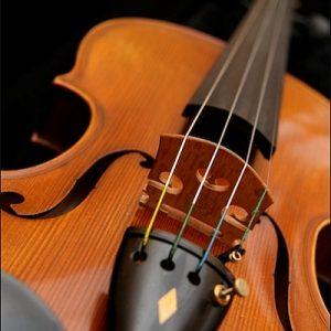 Žice za gudačke instrumente